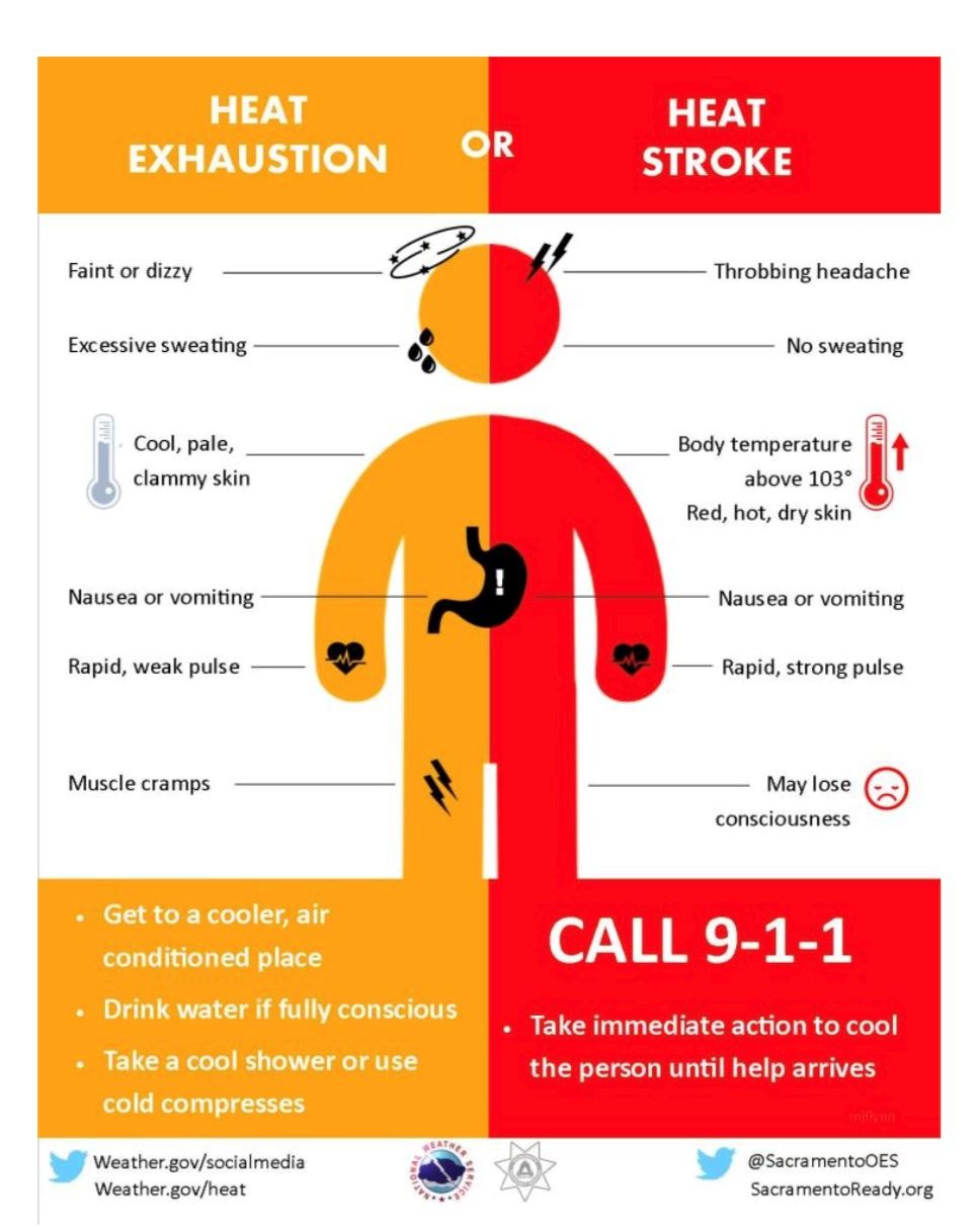 heat exhuastion or heat stroke